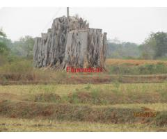3.27 acres near by lake - Nanjangud to Gundlupert road