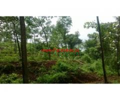 5 Acre Farm Land for Sale - BC Road - Mangalore