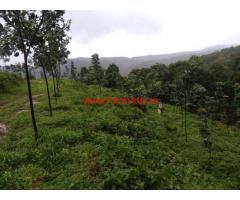 60 Acre Rubber Plantation for sale near Sawantwadi - Sindhudurg