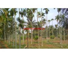 4.5 Acres well developed land for sale in kudur. Near solur
