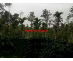 22 Acre coffee land for sale in Wayanad