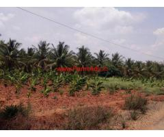 2 acre Agriculture land for sale near bellur cross - Nagamangala