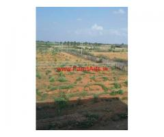 12 Acres pomogranete farm for sale in Sira - Tumakuru