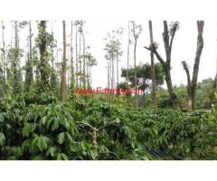 550 Acres Coffee Estate for sale in Madikeri, 10 km from Town