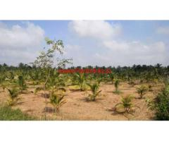4 Acres Agriculture land for sale 8km From Tumkur-Sira