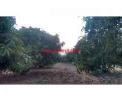 6 Acres Farm land for sale at Ankanathapura - Maddur