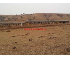 75 Gunta agriland with poultry farm for sale near Shirala - Sangli