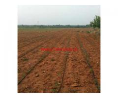 35 acres agriculture land for lease B. Kothakota in chittoor district