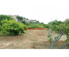 3.80 acres mango farm land for sale near shoolagiri in Hosur