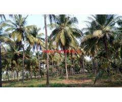 6 Acres Coconut and Agriculture Land for sale near Karathluvu - Udumalpet