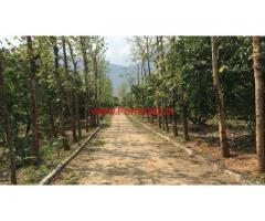 23.4 acres farm land for sale in palakkad, near to Tamilnadu border