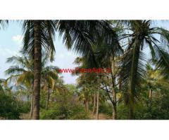 16 Acre farm land for sale in near vatalakundu, dindigul