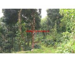 160 Acres coffee estate for sale in kodaikanal hill station