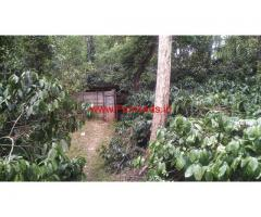 12 Acre Record coffee estate for sale  at Mudigere - Janage