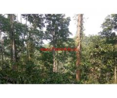 13 Acres Farm land for sale at Wayanad, Makkiyad