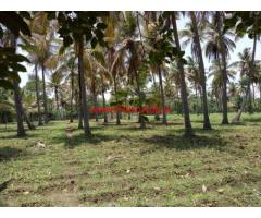 27 gunta agriculture farm land is for sale in Chanapatna