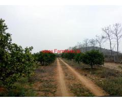 For Sale - 9.5 Acres Mosambi Estate near to Hyderabad Chityala