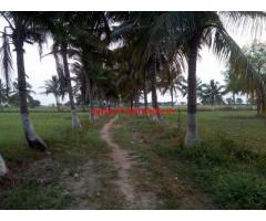 18 Acres Agriculture Land for sale at Nalgonda