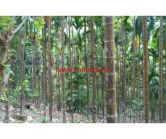 10 Acre River Side farm land for sale at Mankadvu - Alakode