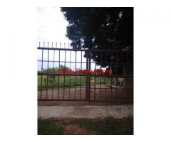 19 acres agriculture garden in Nellore District for sale, near Atmakur