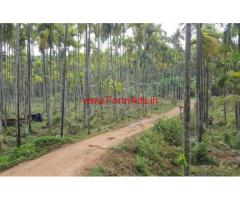 4.5 acre agricultural land for sale in mananthavady, Wayanad