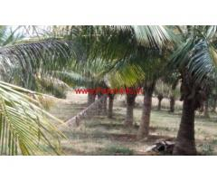 4.5 acre agricultural land for sale, 8 km in palladam to udumalpet road