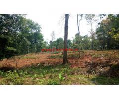 1.24 acres of farm land for sale near koleri, Wayanad