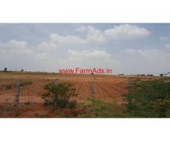 70 acres farm land for sale, located between Penukonda and roddam