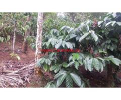 3 acre Coffee land with a small house for sale in wayanad near chundel