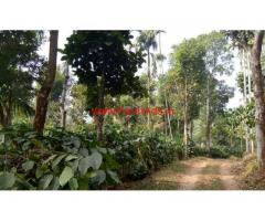 Agriculture land with house for sale at Vellamunda - Wayanad