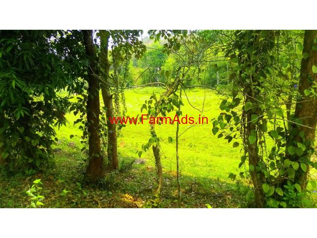 1 acre farm land for sale, 5 KMS from Panamaram - Wayanad