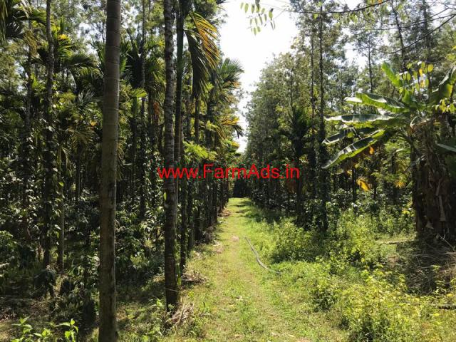 Small multi crop plantation for sale at Chikmagalur.