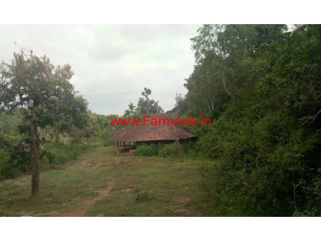 4 acre plain land with 1 acre paddy field for sale near Mananthavady,