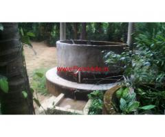 1.5 Acres Well Maintained Coffee and Areca Plantation For Sale