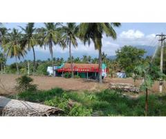 3 Acres Agriculture land for sale at Narasipuram, Coimbatore