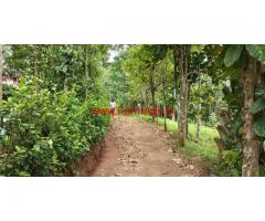1.44 acre LA land with 3 bedroom house for sale at Kattappana