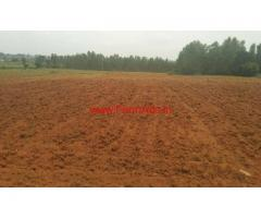 5.5 Acres Agriculture land for sale near Thally - Hosur