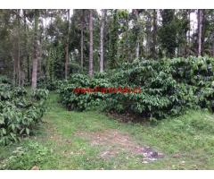 Coffee estate for sale at Chickmaglur district. 67 acres