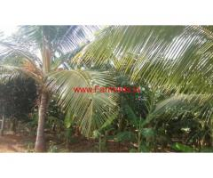 22 Acres Farm Land for sale B Kothakota Mandal of Chitoor