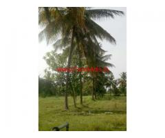6.5 Acres Coconut Farm for sale at  T-Narsipura to nanjangud road
