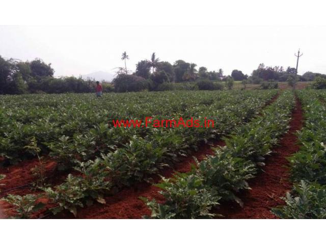 4 acres pure red soil agriculture land for sale at B Kothakota Mandal