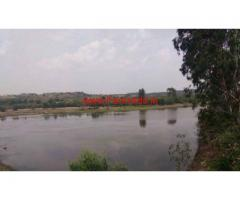 3 acre agriculture land is available for sale in sreenivasapura Taluk