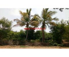 16 acre Mango groove for sale, 100 kms from tirupati