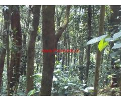 15 acres Farm Land for sale at Panamaram Tar road side