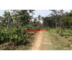 3 Acre farm land for sale in Wayanad, Panamaram.
