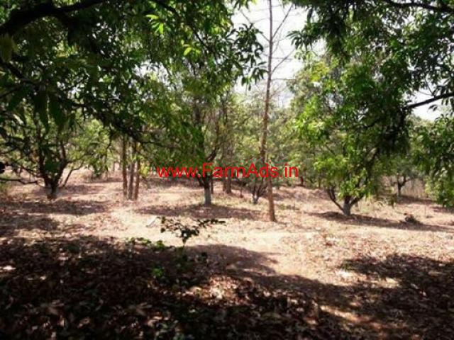 17 Gunta cheap cost agri land for sale in Karjat