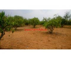 4.65 Acre of Agriculture Farm land for sale Near Denkanikottai