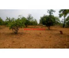 4.65 Acre of Agriculture Farm land for sale Near Denkanikottai
