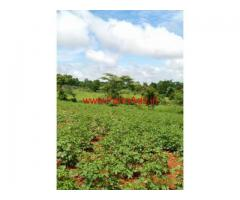 50 Acres Farm land for sale - 40 KMs from Nanjangud