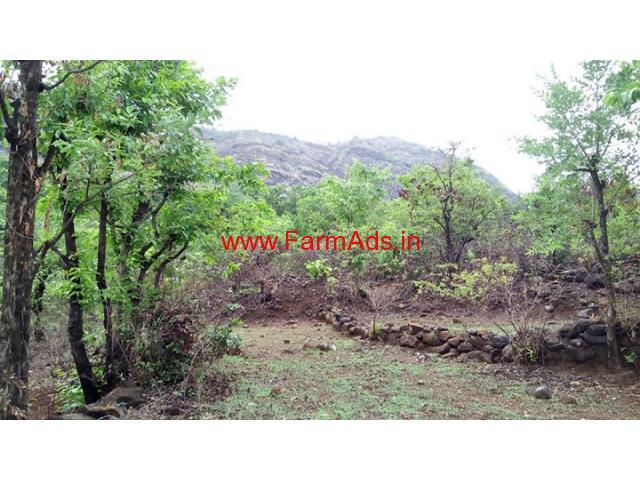 Cheap cost 20 gunta agriculture plot near Nijampur , Mangoan